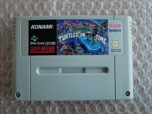 turtle10.jpg